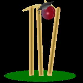 Schools Cricket Online Logo